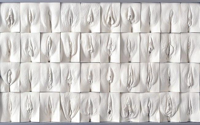 Разные половые губы фото